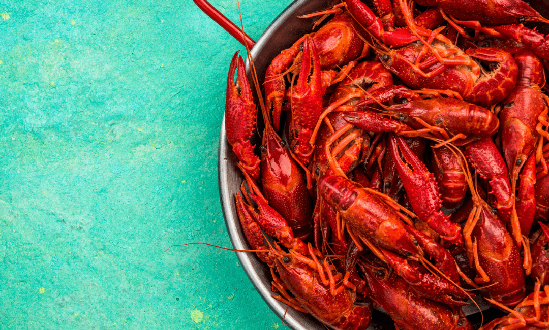 3 Popular New Orleans Foods You Must Try and Where to Find Them?